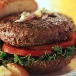 Burger - Bison
