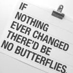 change butterflies